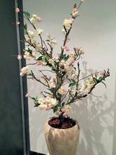 Bloesemboom 140 cm.