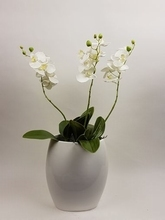 Vaas met 3 orchideeen