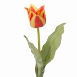 Tulp 40 cm