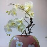 Vaas met orchidee